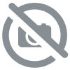 Signaux de direction type D, E, EB